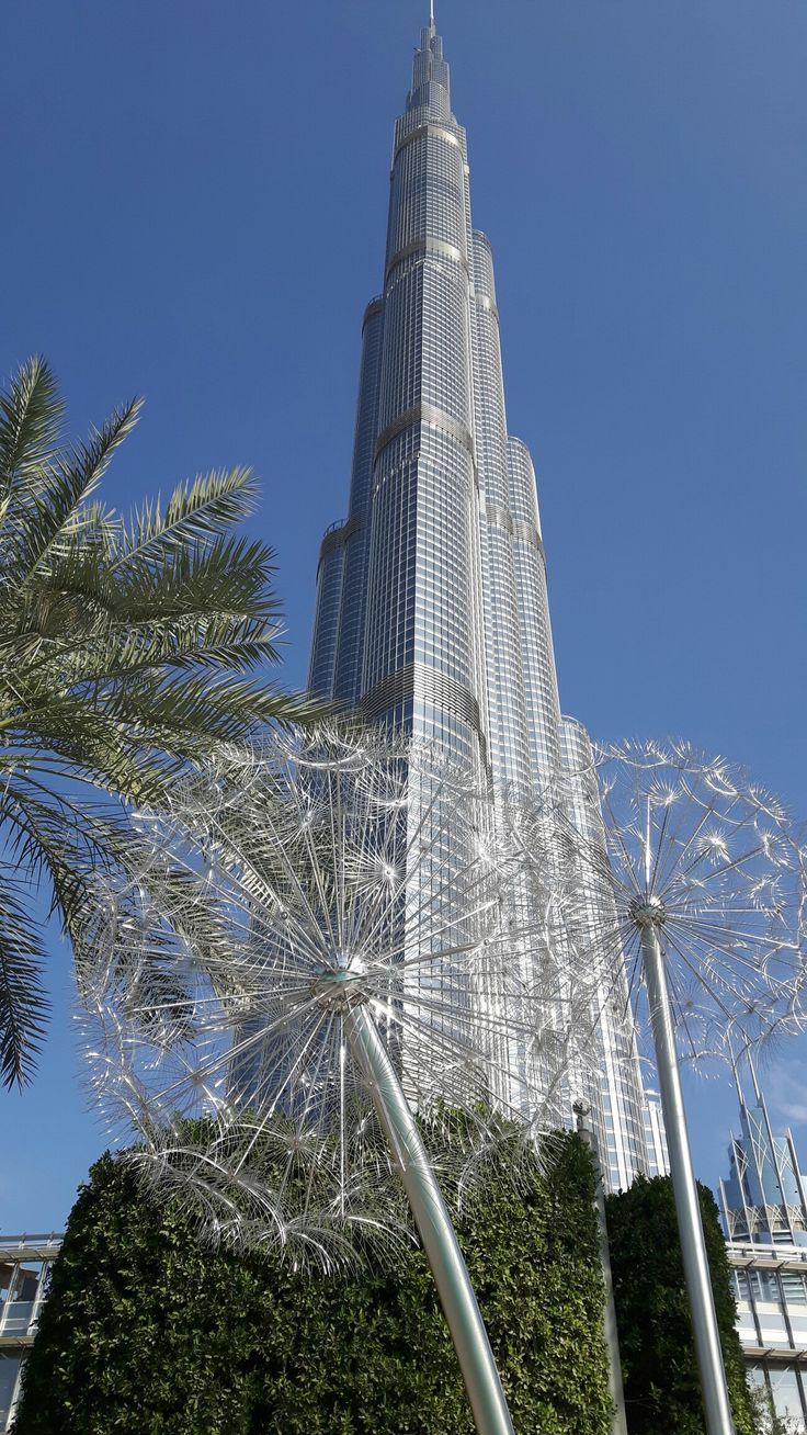 Dandelions Dubai 2017