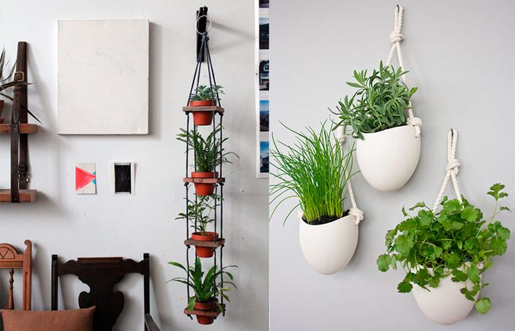 Maneiras de pendurar plantas: na parede
