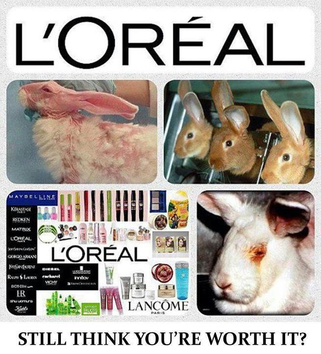 """every time you buy make-up and cleaning products that do not say """"Not Tested On Animals"""", YOU are paying for animals to be tortured."""