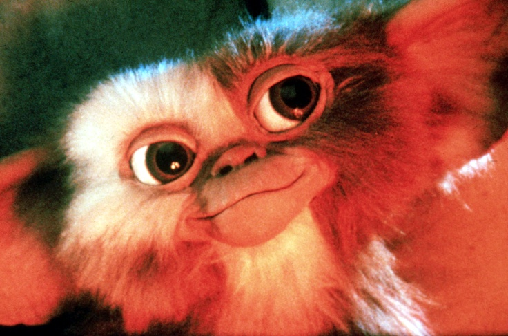 """Tell me something, Billy. How come a cute little guy like this can turn into a thousand ugly monsters?"" #gremlins"