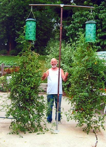 Tuinieren op flats en balkons van A tot Z voor binnen of buiten. - Tallsay.com