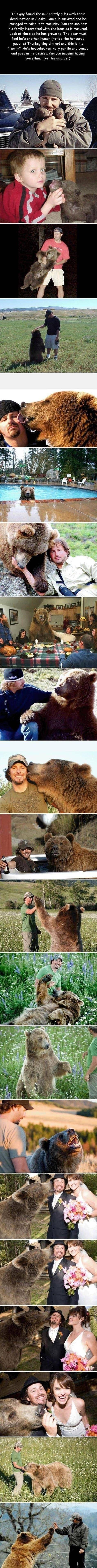 beary cute story