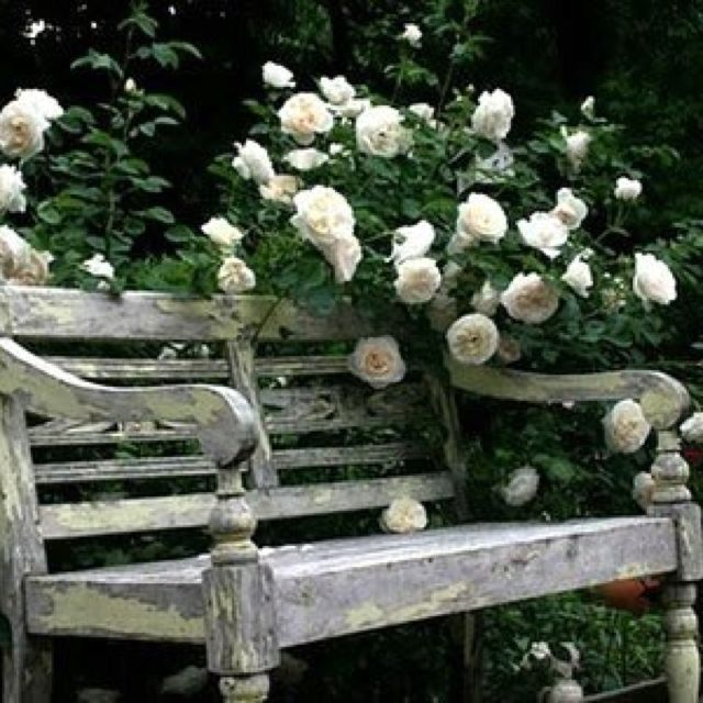 Vintage garden bench - via Coco du Trocadéo - This bench would go beautifully in my mother's white garden!