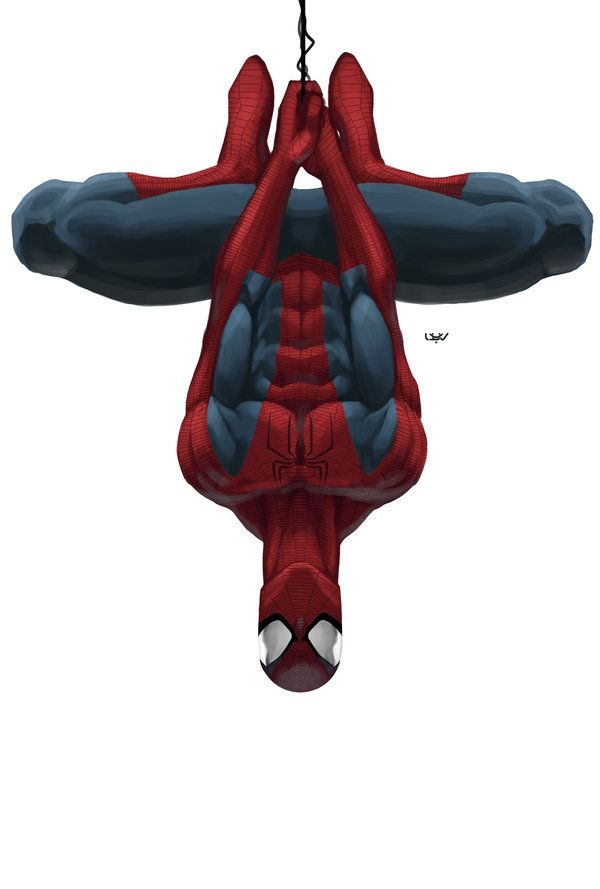 -- Spiderman --  by *wyv1