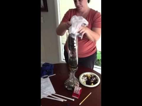 2 liter bottle ecosystem project - YouTube