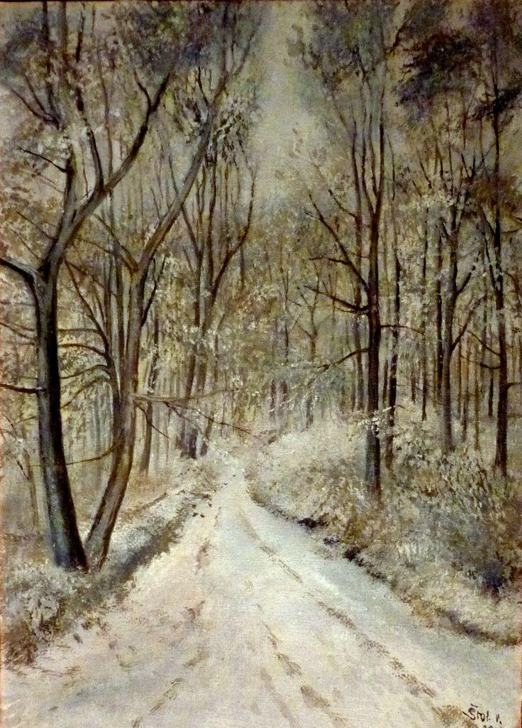 Zimním lesem
