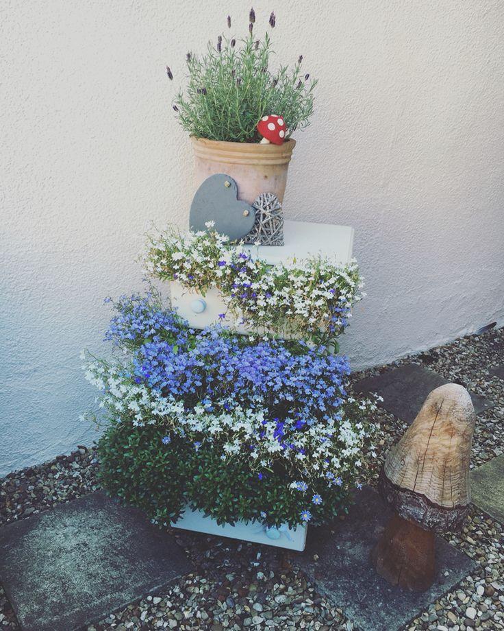 #flowerdrawers creative garden decor