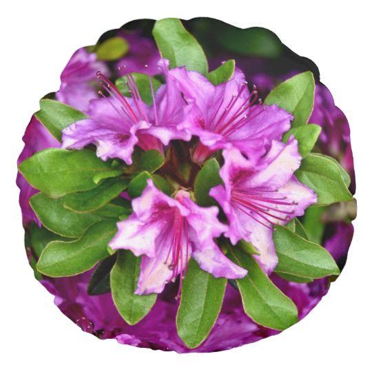 Azelia Round Throw Pillow by www.zazzle.com/htgraphicdesigner* #zazzle #gift #giftidea #round #throw #pillow #throwpillow #cushion #azelia #flower #flowers #fuschia #nature #spring #summer