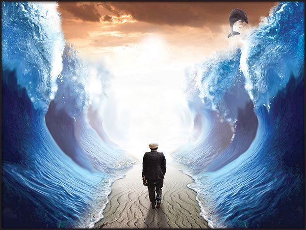 Liberte Sua Mente Voce Acredita Em Milagres Amor De Deus