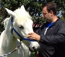 Christophe is treating a horse