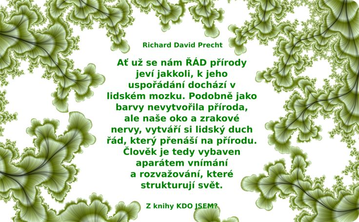 david-2