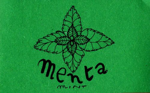 Learning Italian Language ~ Menta (mint) IFHN