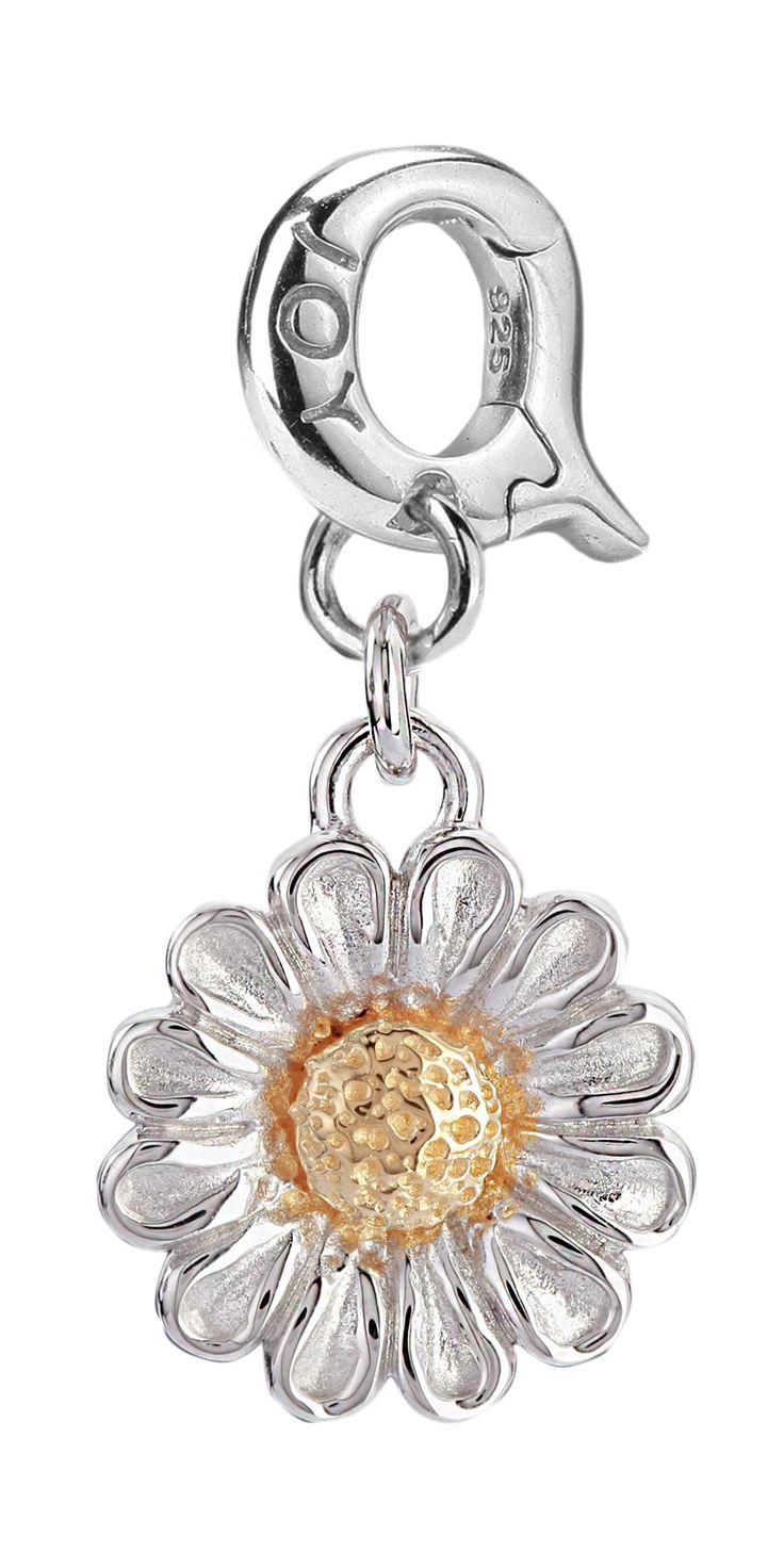 Joy de la Luz   Daisy Flower