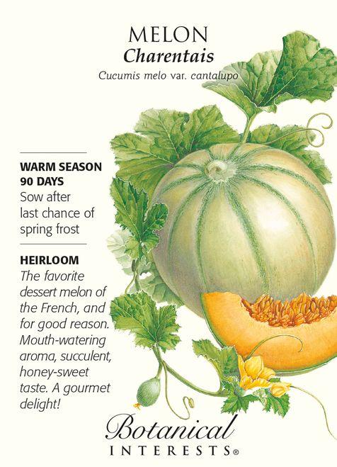 Charentais Melon Seeds - 1 gram - Botanical Interests