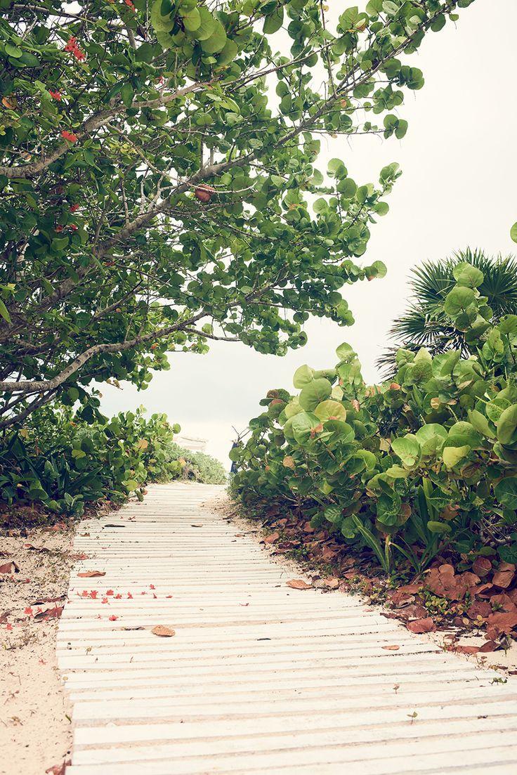 #esprit #dreamliving #beach #green