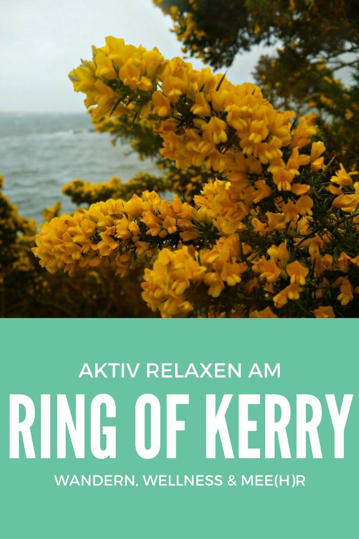 Der Ring of Kerry und der Wild Atlantic Way zählen zu den schönsten Küstenstraßen der Welt. Für einen Zwischenstopp oder als Ausgangspunkt für Entdeckungen an Irlands Westküste ist das historische Parknasilla Hotel bei Sneem an der Bucht von Kenmare ideal. Erholung und Aktivitäten in der wunderschönen Natur werden großgeschrieben. Insbesondere die zahlreichen Wanderwege des Resorts haben es mir bei meinem Aufenthalt angetan.