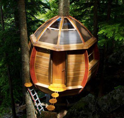 The HemLoftTiny Treehouse, Amazing Treehouse, Hemloft Treehouse, Tree Houses, Hanging Treehouse, Trees House, Awesome Treehouse, House On The Trees, British Columbia