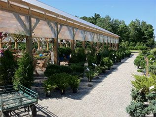 153 best Plant Nursery images on Pinterest Plant nursery Garden