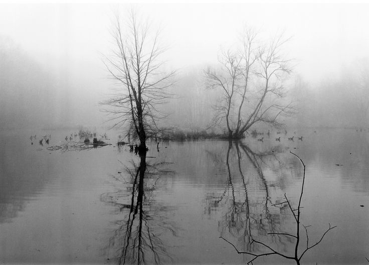 12. Sandy Creek (1998)