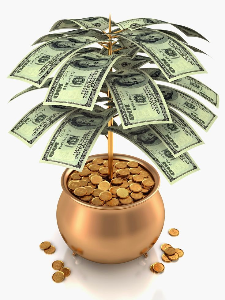 How to make enough money to support your family? Visit our