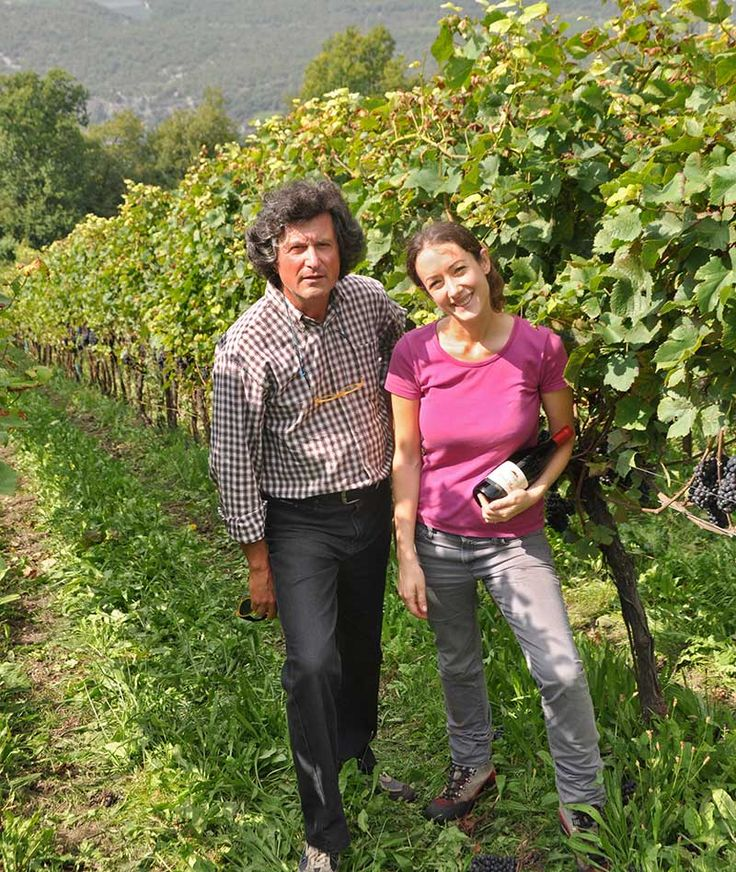 Erika Pedrini was named in Germany Best Young Oenologist of 2011. Here is in her Pinot Noir vineyards at Pravis, above Lake Garda