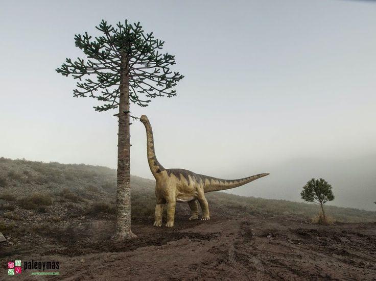 Reconstrucción de saurópodo (12 m de largo y 5,5 m de alto) y araucaria (10 m de alto) en el espacio anexo al tronco fósil de Igea.