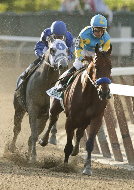 """And American Pharoah makes his run for glory!""  One of racing's most legendary moments."