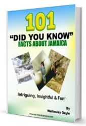 facts about jamaica book icon