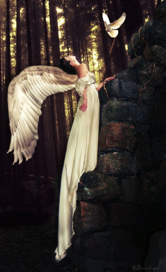 The Angel & the Bird~I know it is an angel, but the wings are great for Faeries