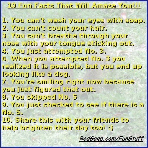10 Fun Facts That Will Amaze You!!!