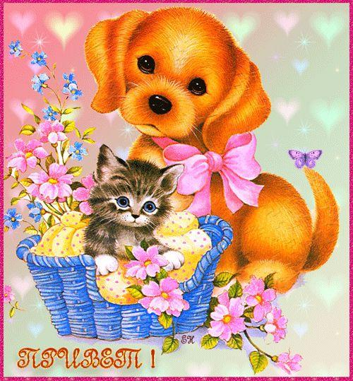 Открытка котенок с щенком, поздравлением рождения близнецов