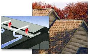 Best 25 Ridge Vent Ideas On Pinterest Roof Insulation