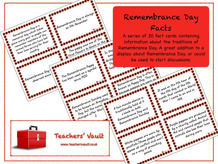Remembrance Day Facts - KS2, KS3, KS4 Citizenship and British Values Teaching Resources and Displays