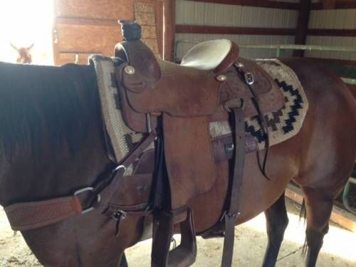 Brandon Ward Roping Saddle for Sale - For more information click on the image or see ad # 38197 on www.RanchWorldAds.com