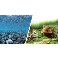 Fish Tank & Aquarium Backgrounds | PetSmart