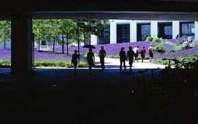 Cet aménagement qui date de 2001 à été conçu par les architectes paysagiste de Bierbaum & Aichele pour la ville de Mayence, en Allemagne. La rénovation