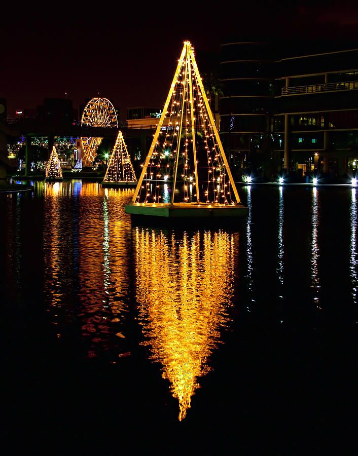 "Beautiful floating lit Christmas ""Trees"" Belmont Shore, Long Beach - California ... Where I lived in my 20's ❤"