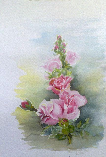 Pink roses aquarelle