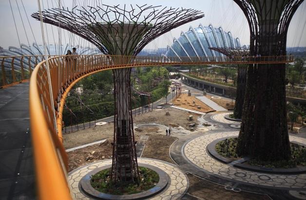 Jardins verticais que trazem novas possibilidades pro ecossistema urbano: Supertree, Gardens Walkways, Favorite Places, The Bays, Ocbc Skyway, Singapore Supertr, Trees, Architecture, Amazing Gardens