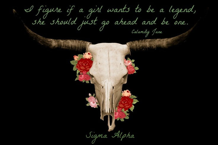 Calamity Jane Sigma Alpha. Someone make this on a T-shirt!