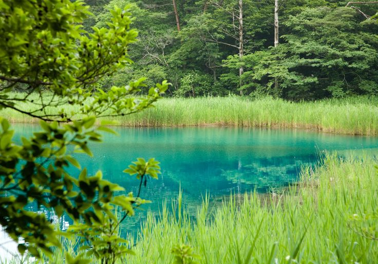 生きてるうちにみておきたい!日本国内にある池沼の絶景15選 - Find Travel