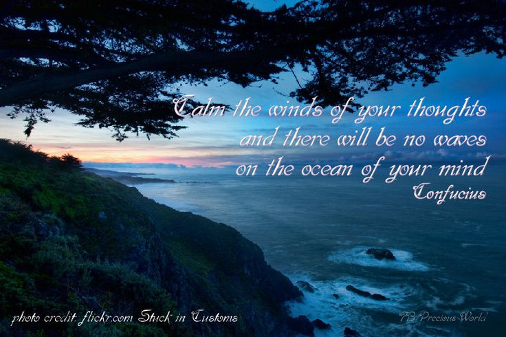 Calm the winds of your thoughts and there will be no waves on the ocean of your mind.  ~ Confucius