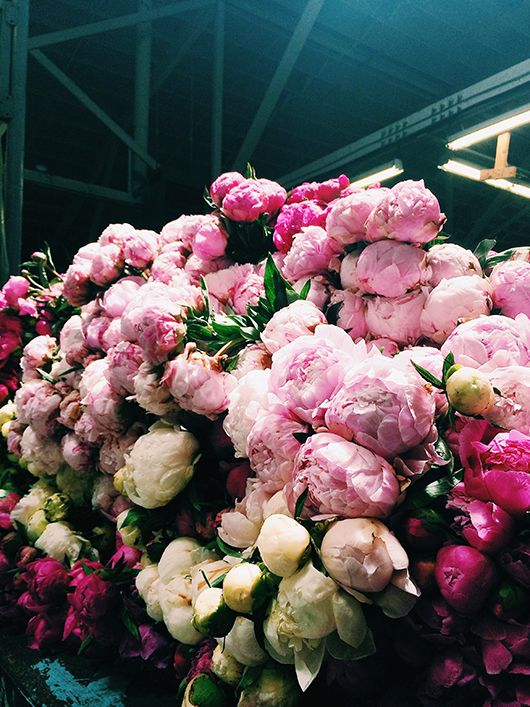 #HighHeelers peonies at the san francisco flower mart - Gorgeous - #LifeStyle