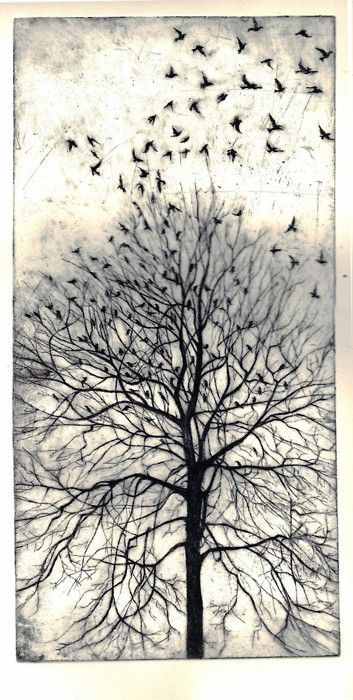 From the Trees, Philippa Jones, etching