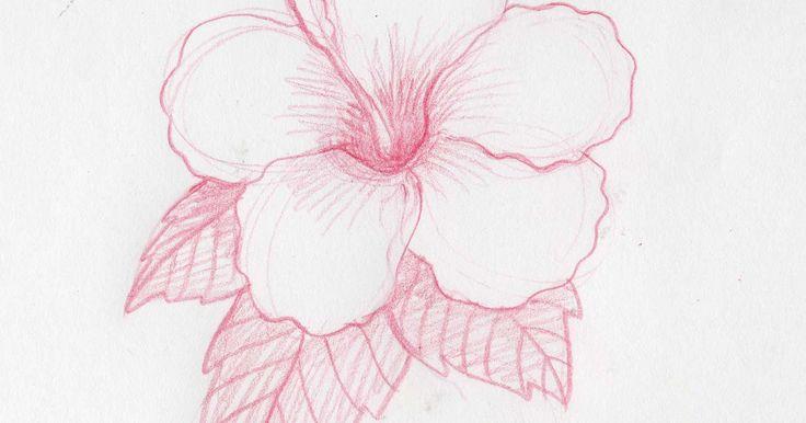 Cómo dibujar flores hawaianas. El hibisco es la flor más conocida de las islas hawaianas. Se ven con frecuencia en el pelo de las niñas Hula, así como en muchos temas de decoración luau. Tu dibujo se puede utilizar para muchas cosas, como regalos, tarjetas de felicitación, invitación a una fiesta hawaiana o luau, para la decoración del hogar, etc