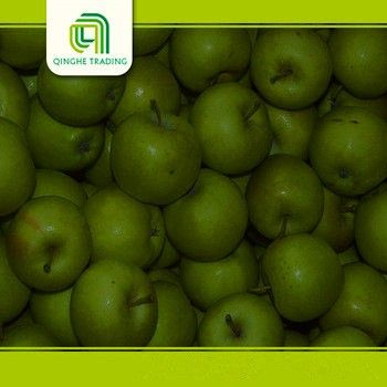 Hot selling fresh red green cheap stock gala apples with great price