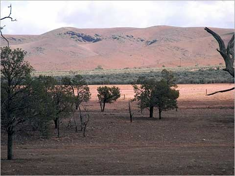 This is the sort of country Gemma (from Red Dust) lived in. It can be pretty inhospitable at times, but it gets into your soul.