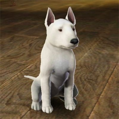 Improved Mini Bull Terrier by chinarose93 - The Exchange - Community - The Sims 3