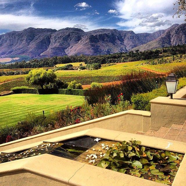 """The Ernie Els Wine Estate in Stellenbosch."" ________________________________________  captured by @aurelie_rakowski #capetown #westerncape #southafrica #stellenbosch #ernieelse #wineestate #nature #wine #estate #beautiful #amazing #awesome #discover #explore #amazingcapetown #explorecapetown #lovecapetown"