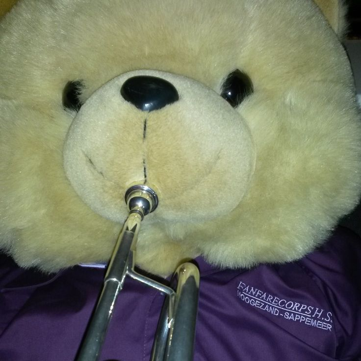 Beer met trompet in een paarse blouse van fanfarecorpshs